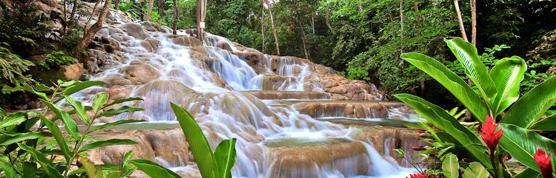 Сафари по Black River и посещение водопадов YS Falls