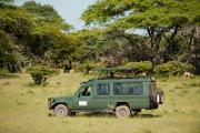 Самые интересные экскурсии на Занзибар